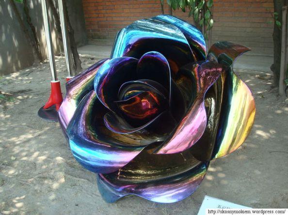 Wang_Jun_Colorful_Rose