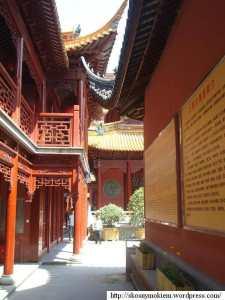 Qinci_yangdian_daoguan_01