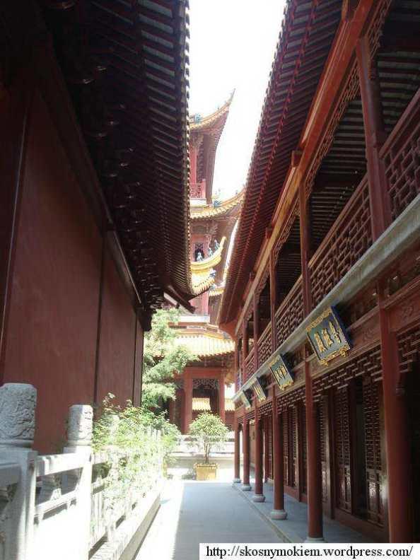 Qinci_yangdian_daoguan_11