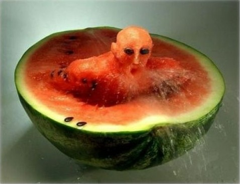 西瓜很忙雕刻_Xiguahenmang_watermelon_sculpture_carvings_china_arbuz_rzezby_chiny_13_life_shengdu_com