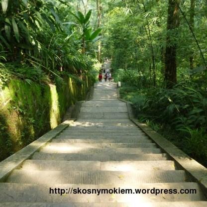 04_乐山大佛_giant_Leshan_Buddha_楼梯_stairs