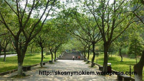 07_乐山大佛景点环境_giant_Leshan_Buddha_inside_scenic_spot_01