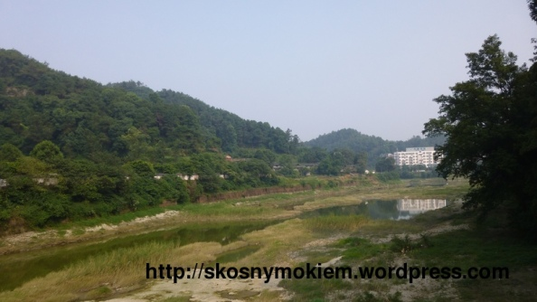 19_乐山大佛景点周边环境_giant_Leshan_Buddha_surroundings_03